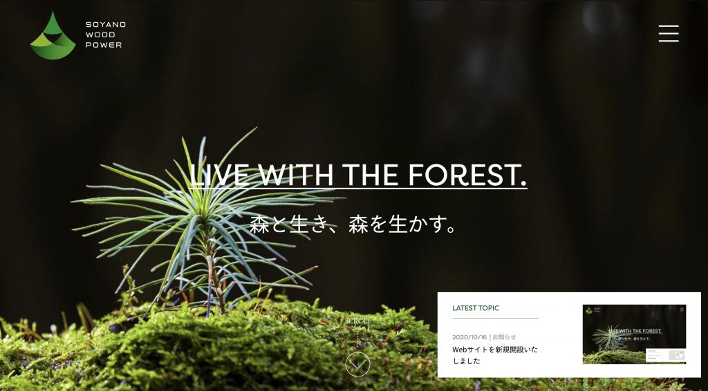Webサイトを新規開設いたしました